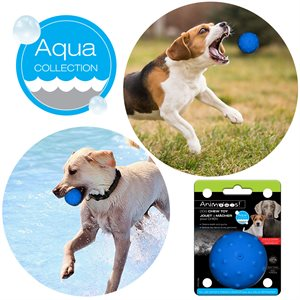 Dog water soaking rubber ball, blue